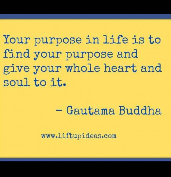Quotes About No Purpose In Life 54 Quotes