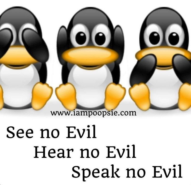 Penguin Love Quotes Cool Quotes About Penguins 60 Quotes Awesome Penguin Love Quotes
