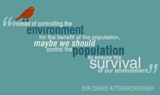 population impact on environment essay