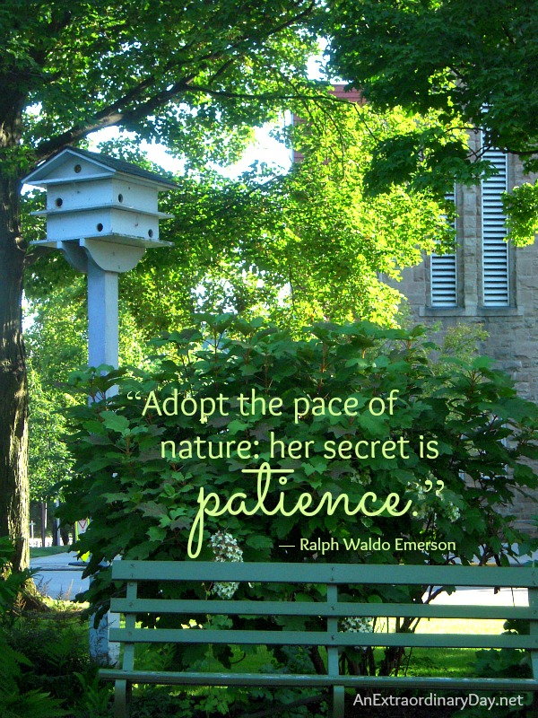 Quotes About Nature Emerson 41 Quotes