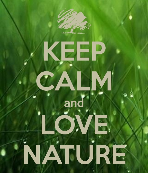 Quotes About Love Of Nature 318 Quotes