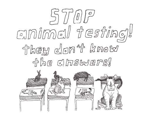 stop the cruelty why should testing on animals become history In order to become leaping the ground-breaking european ban on animal testing for cruelty free international does not agree with the narrow.