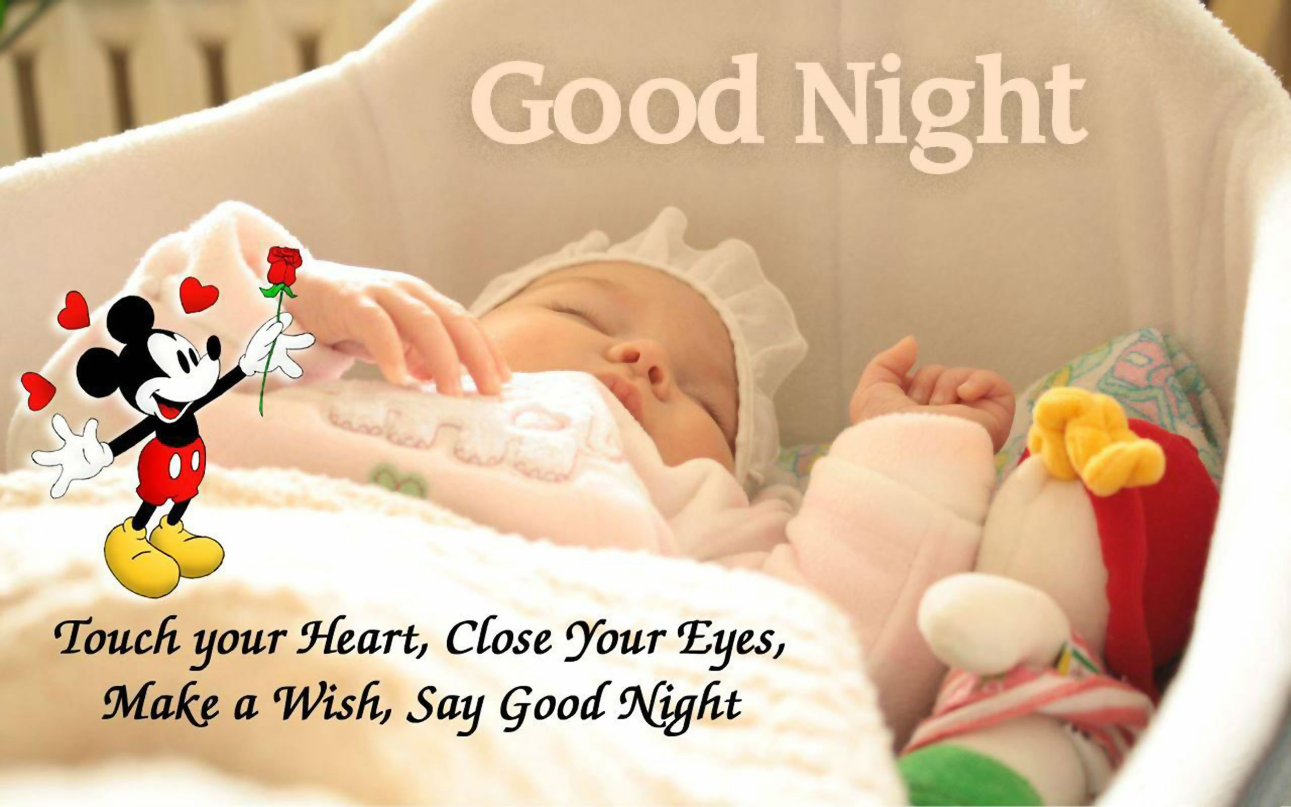Quotes about Good Night 242 quotes