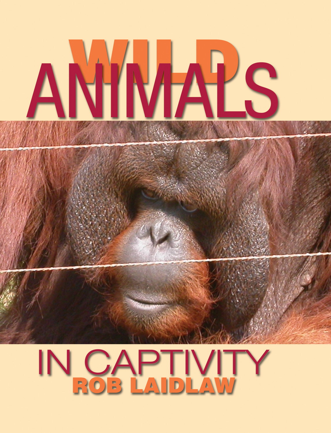 animals captivity Animals in captivity become bored and don't live in a natural manner, according to ecologist beckoff diseases from wild animals the centers for disease control and prevention warns that wild animals kept in captivity can spread diseases to humans reptiles can spread salmonella, a bacterial disease.