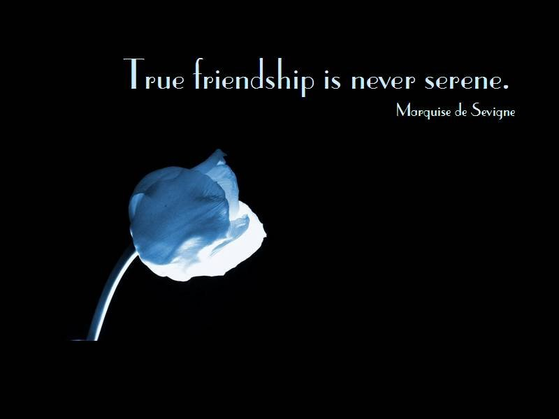 Quotes About Friendship Short 36 Quotes