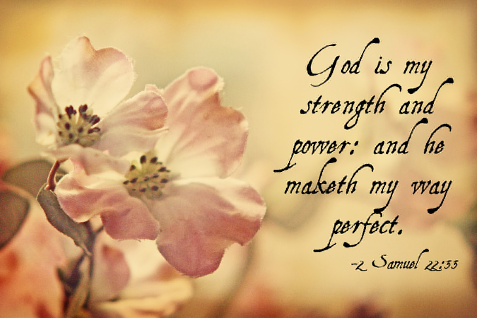 Quotes About Strength Bible 26 Quotes