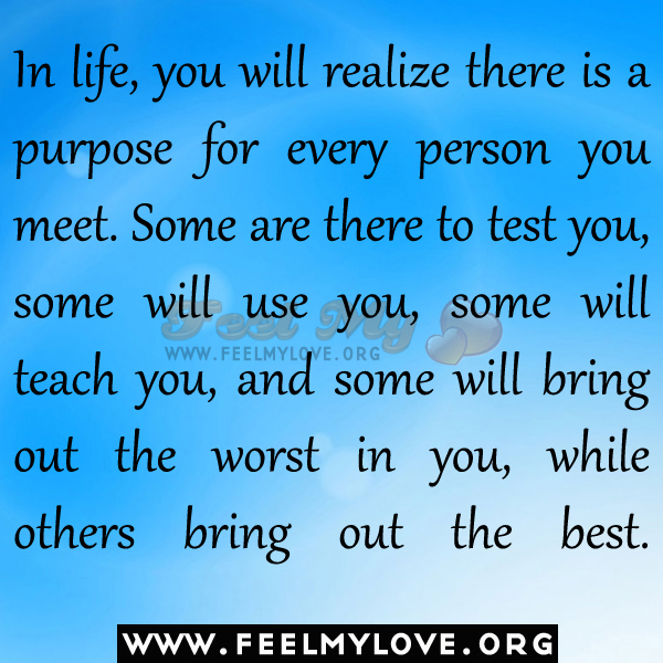 Quotes About No Purpose In Life 60 Quotes Amazing My Purpose In Life Quotes