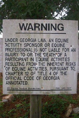 Dumb laws in georgia