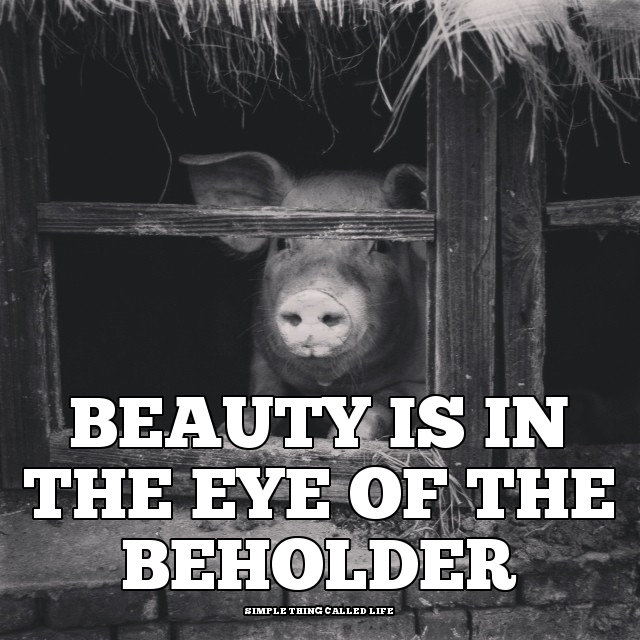 essay about beauty is in the eye of the beholder Science explains why beauty is in the eye of the beholder istockphoto the idea that beauty is in the eye of the beholder has been around for a long time.