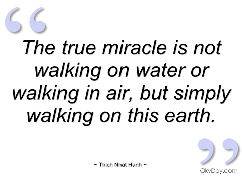 Quotes About Walking Interesting Quotes About Walking On Air 48 Quotes