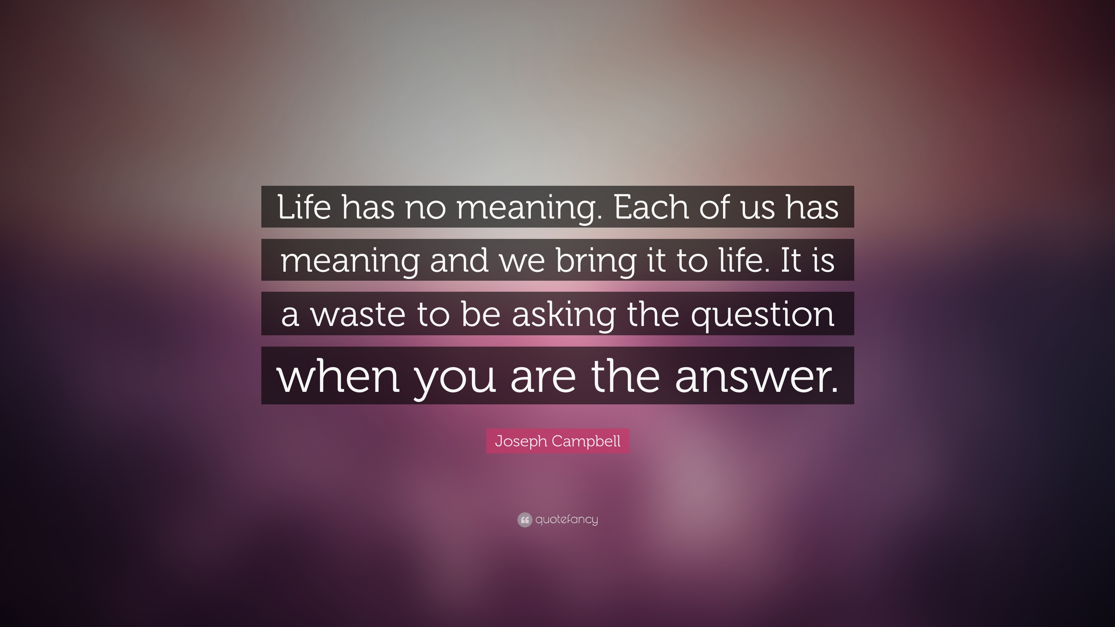 Quotes About No Meaning To Life 72 Quotes