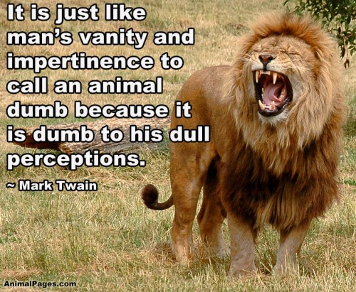 Quotes About Animals Life 123 Quotes