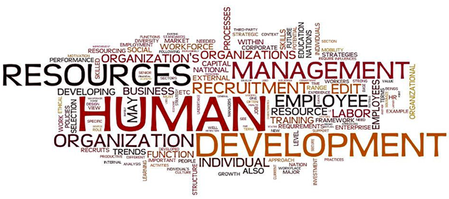 a look at the role and importance of consultants in the human resources development The human resource consulting industry has emerged from management hr consultants can fill two typical roles (1) certified human resources consultant.