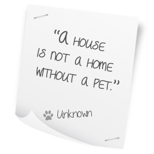 Pet Quotes | Quotes About Your Pet 69 Quotes