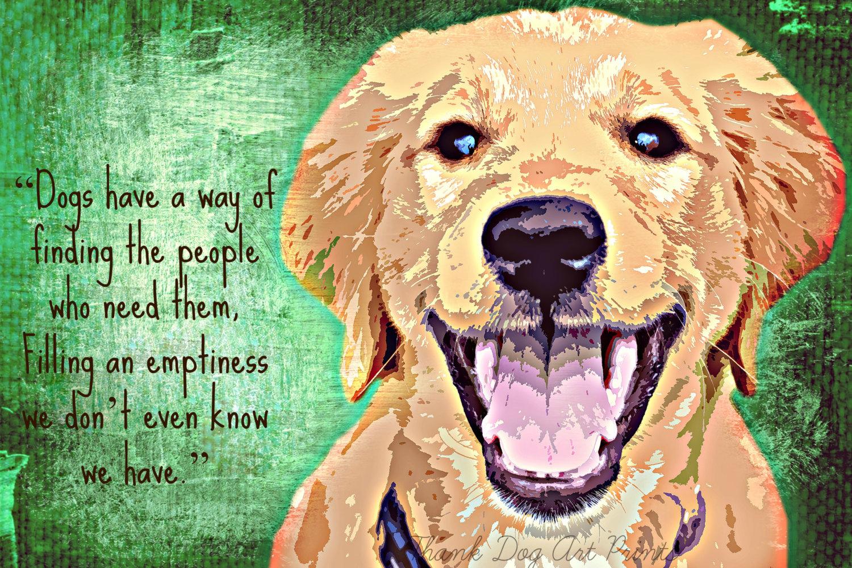 Quotes Funny Golden Retriever Puppy Www Topsimages Com