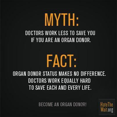 i am an organ donor essay