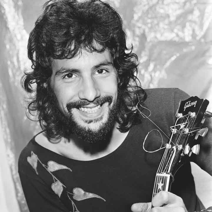 Quotes About Cat Stevens 50 Quotes