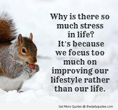 Quotes About Stressful Life 60 Quotes Adorable Life Stress Quotes