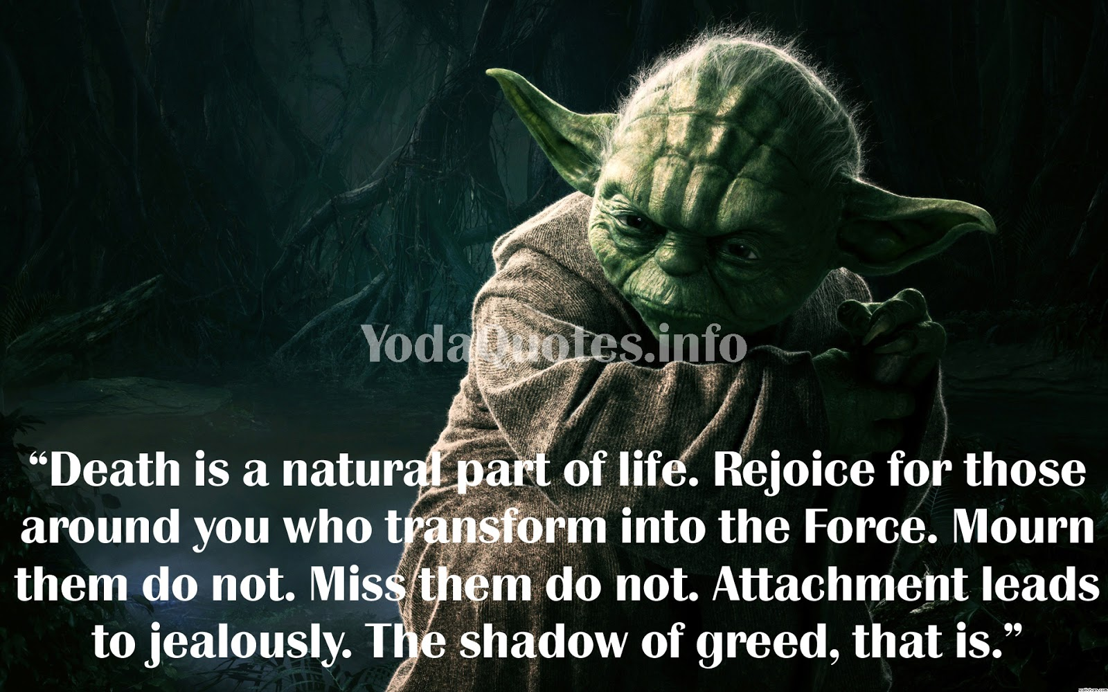 Quotes About Yoda 46 Quotes
