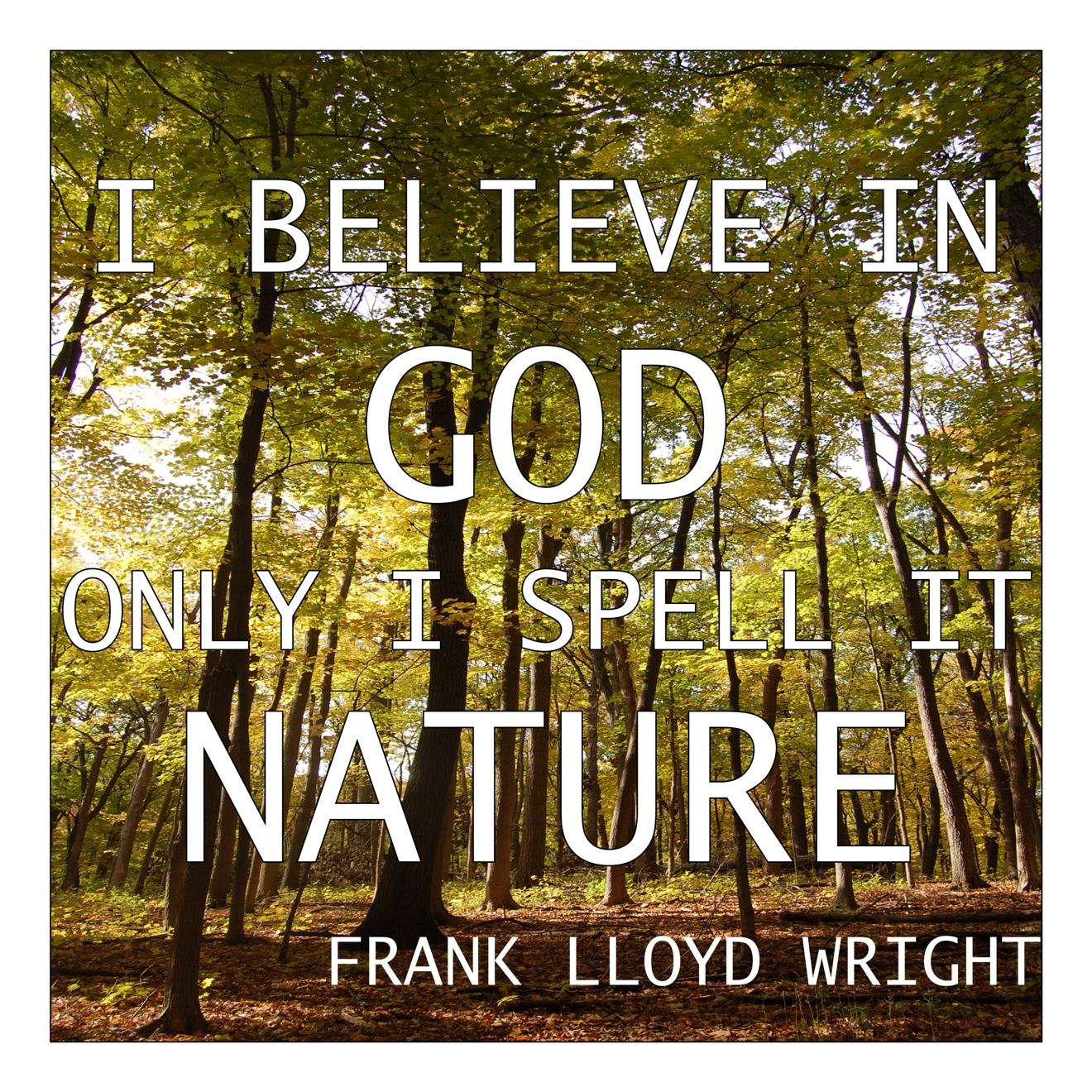Quotes About Nature And Youth 37 Quotes