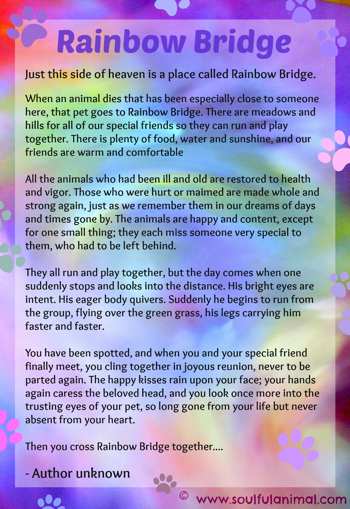 Quotes about Rainbow bridge 49 quotes