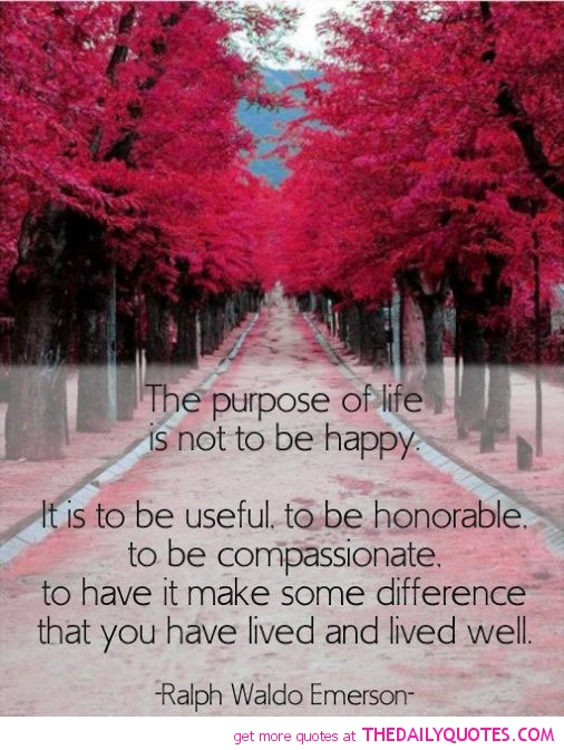 Quotes About Life Without Purpose 60 Quotes Gorgeous Purpose Of Life Quotes