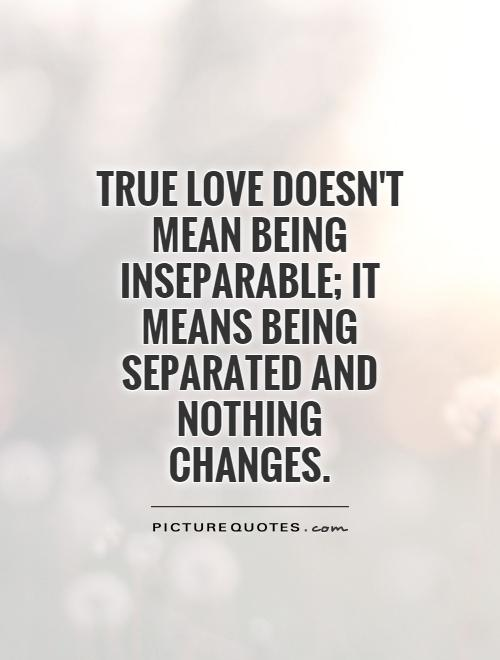 Quotes About Being In Love 60 Quotes New Being In Love Quotes