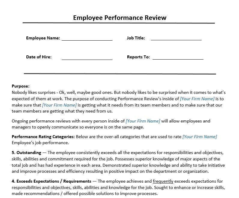 employment review comments