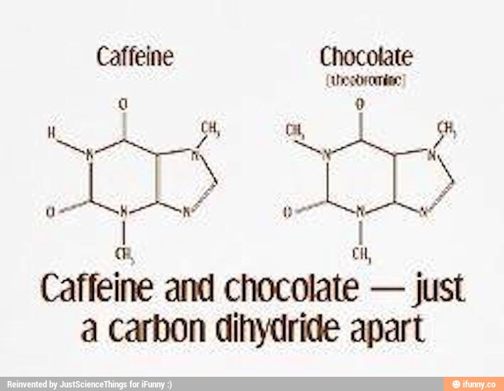 caffeine synthesis Synthesis and properties caffeine 58-08-2, caffeine manufacturing, caffeine supplies, caffeine information, caffeine suppliers, caffeine manufacturers, caffeine factory, caffeine exporters, caffeine importers, caffeine buyers, caffeine companies india.