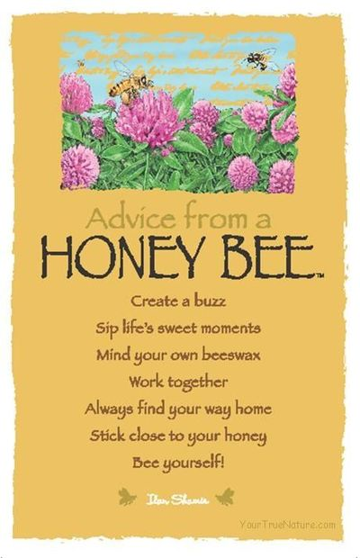 Image of: Honey Bees Honey Btt Create Buzz Sip Lifes Sweet Moments Mind Your Own Beeswax Work T05ther Always Find Your Way Home Stick Close To Your Honey Bee Yourself Quote Master Quotes About Bees 257 Quotes
