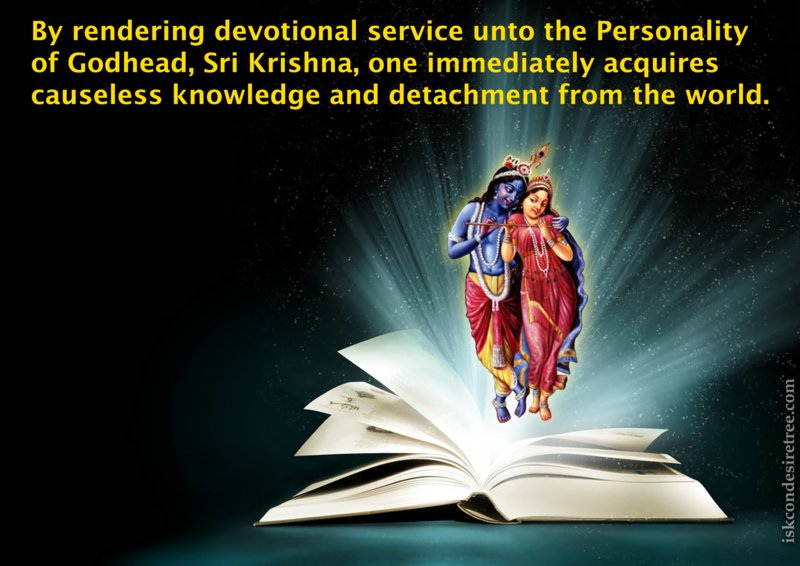 Quotes About Devotional 60 Quotes Delectable Devotional Quotes