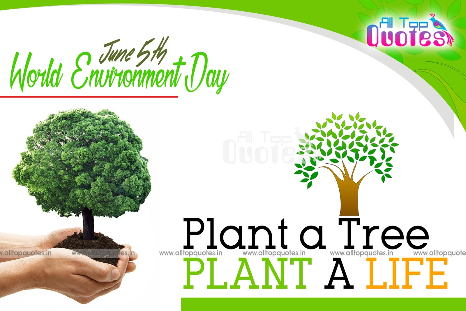 save greenery essay Find save trees stock images in hd and millions of other royalty-free  conserve big trees and improve the global greenery to maximise the advantages of having.