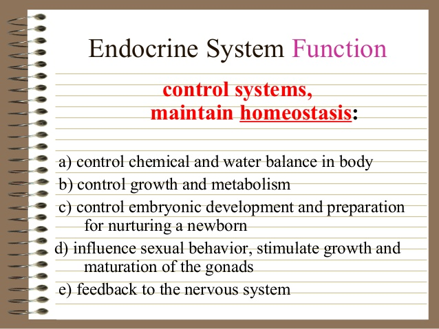 Quotes about Endocrine system (33 quotes)