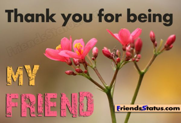 Thank You Quotes For A Friend With Pictures All About Clipart