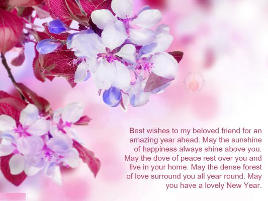 quoteshungercom helpful non helpful best wishes to my beloved friend for an amazing year ahead may the sunshine of