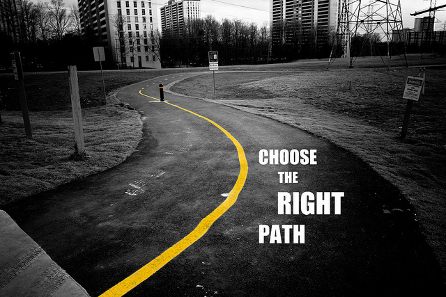 choosing the right path in life Discuss why exploring different career options is an important step in choosing the right path in your professional life what are the benefits of - 2365394.