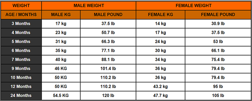 Quotes About Height And Weight 27 Quotes