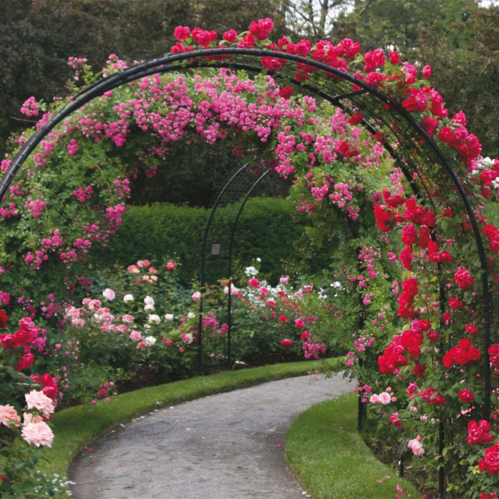 Flower Garden Landscaping Ideas Pict: Quotes About Rose Garden (83 Quotes