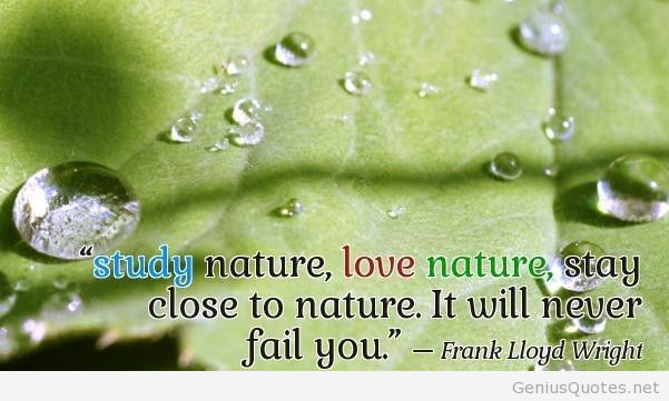 Quotes About Nature Love 320 Quotes