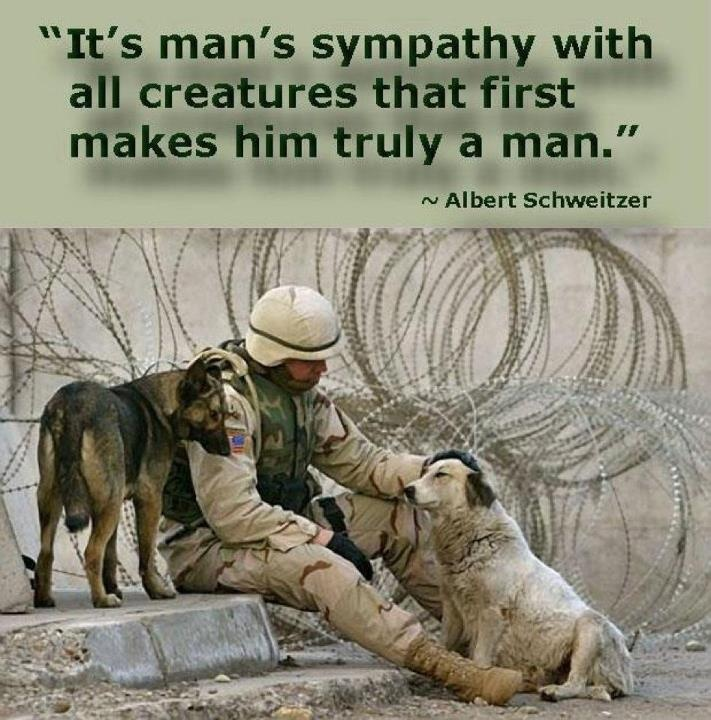 Quotes About Animals Man 158 Quotes