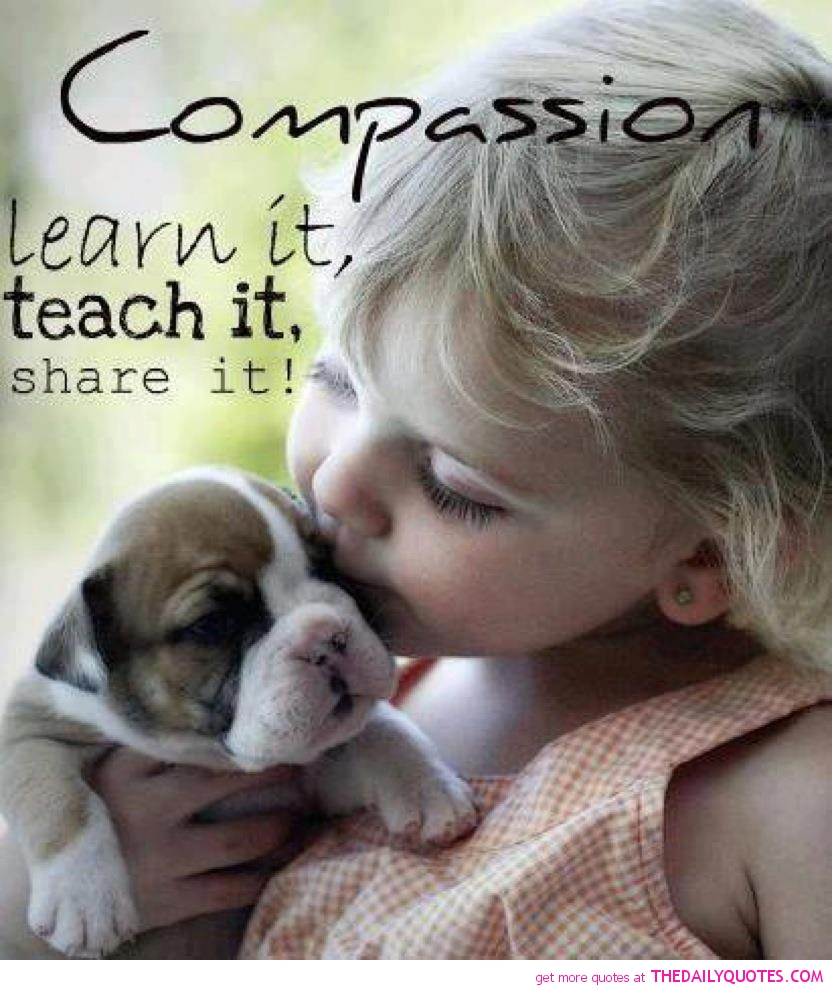Quotes About Kindness To Animals 33 Quotes