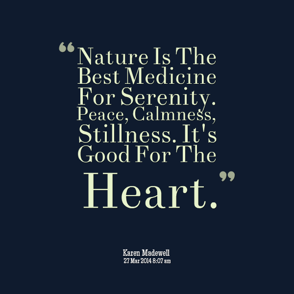 Quotes About Nature And Peace 91 Quotes