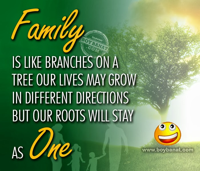 Quotes About Happiness And Family 59 Quotes