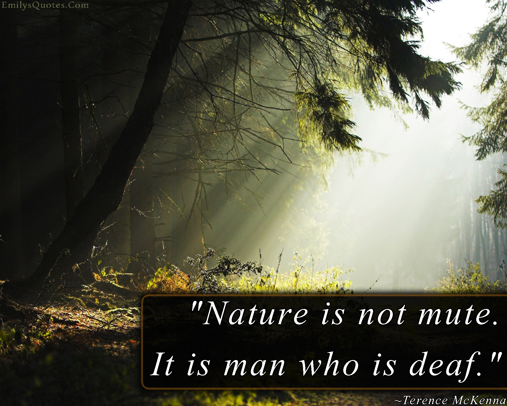 Image of: Wallpapers Quote Master Quotes About Nature Of Life 391 Quotes