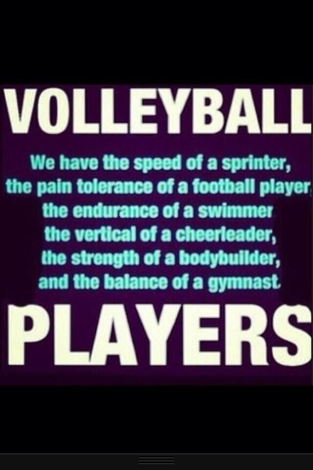 Quotes about dating a volleyball player