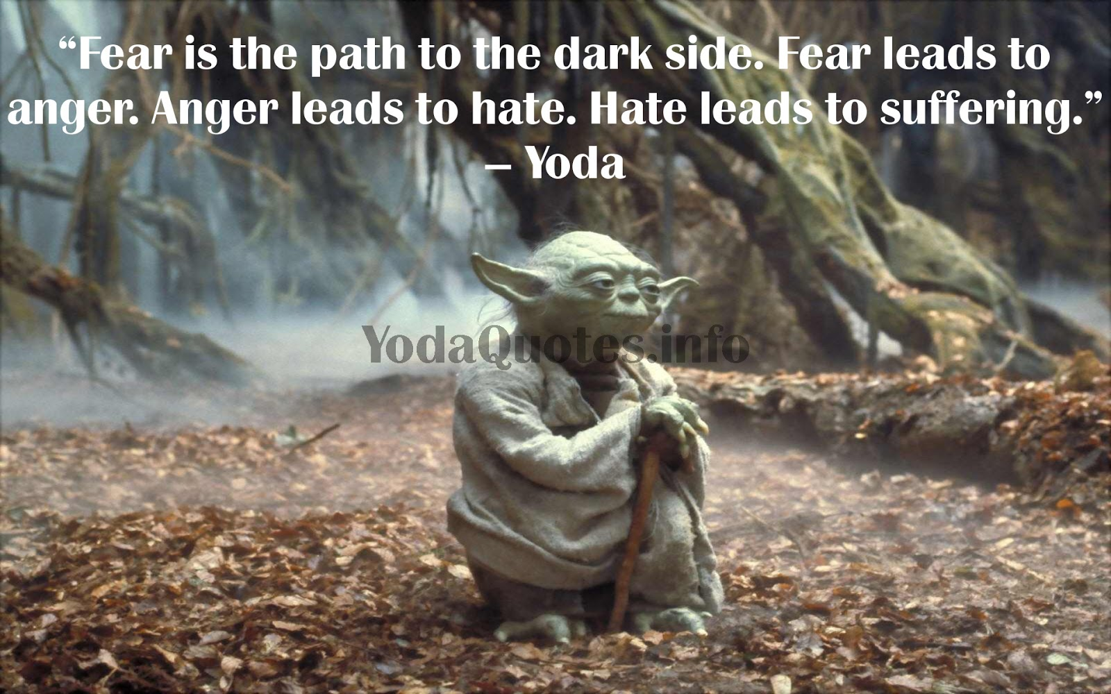 Quotes About Fear And Wisdom 65 Quotes