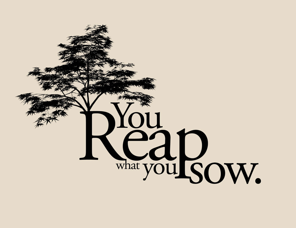 Quotes about Reap What You Sow (36 quotes)