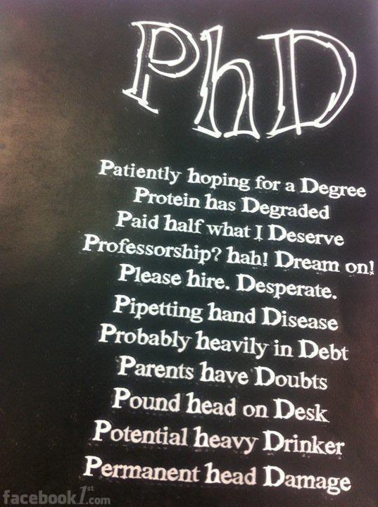 phd dissertation quotes