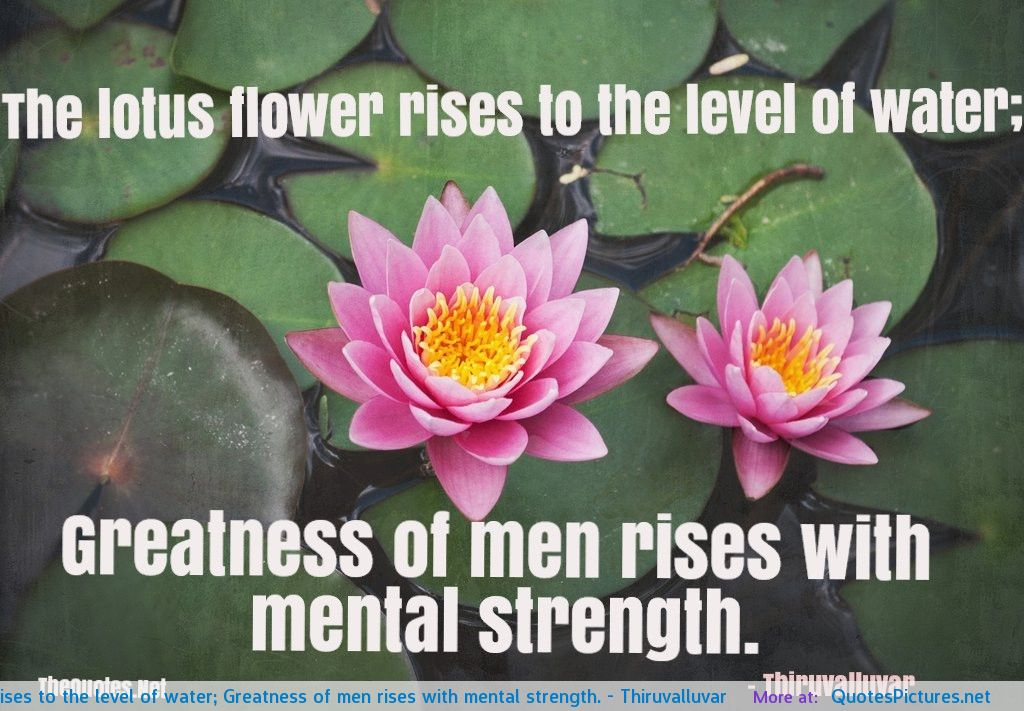 Quotes about lotus flower 33 quotes quotespictures mightylinksfo Choice Image