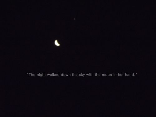 Quotes About Night And Moon 112 Quotes